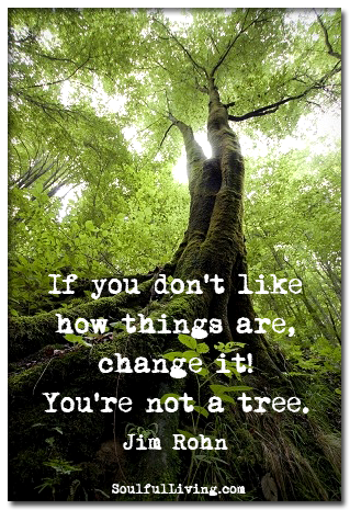 Change Tree Quote