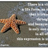 Your Unique Brilliance - Starfish Quotation