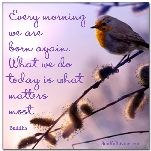 Every Morning We Are Born Again